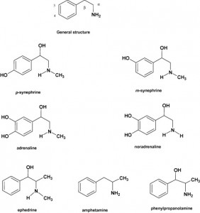 Similarities of Synephrine With Ephedrine and Other Compounds